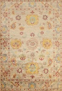 NEW Floral Oriental Oushak Area Rug Wool Hand-knotted Traditional 9x11 ft Carpet