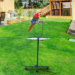 "49"" Bird Parrot Play Stand Cockatoo Gym Perch Metal Pet Feeder w/ Bowls Wheels"