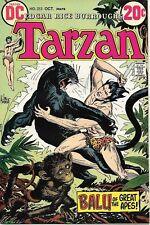 Tarzan Comic Book #213, DC Comics 1972 VERY FINE