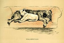 CECIL ALDIN DOG PRINT CRACKER BULL TERRIER MICKY IRISH WOLFHOUND HUNTING FARM 17