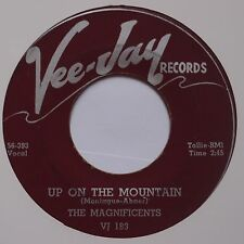 MAGNIFICENTS: Why Did She Go / Up on the Mountain VEE JAY 45 doo wop ORIG killer