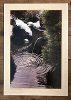 "Vintage Bela Kalman Signed Photograph ""Kamakura, Hokokuji Temple"" Japan, 1986"
