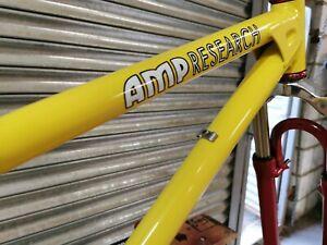 AMP B5 Mountain bike frame retro rare Chris King Thomson XT Rock Shox ROOX