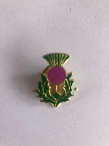scottish thistle brooch/badge