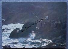 PECHE EN MER SOLEIL COUCHANT BRETAGNE      postcard