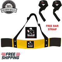 MFA PRO ARNOLD WEIGHT LIFTING BODYBUILDING BICEP ARM BLASTER EZ BAR CURL ARMS