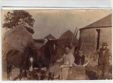 Photograph of a farm scene in an unknown location (C29299)