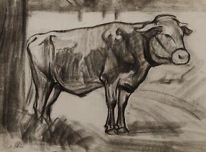 Mathilde Sohler 1883 - 1964 - Cow