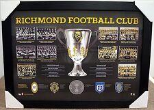 RICHMOND TIGERS PREMIERSHIP HISTORY PRINT FRAMED - BROWNLOW MEDAL - AFL PREMIERS