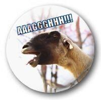 "SCREAMING GOAT - 25mm 1"" Button Badge - Novelty Cute Meme Sheep"