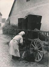 ALSACE c. 1935 -  Vendanges  - DIV 6980