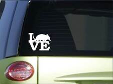 "Armadillo love sticker *H168* 6"" vinyl texas decal"