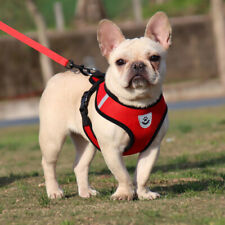 More details for harness lead small dog cat puppy pet mesh vest reflective