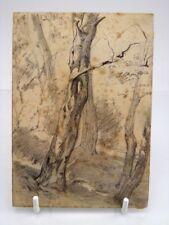 Antique 19th century pencil drawing tree study Thomas John Hughes #10