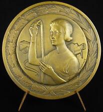 Médaille Cinéma Belgium arts visuels cours la Cambre Henry Van de Velde medal