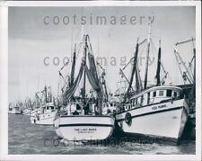 1950 Fishing Boats Lady Maria Seahawk Docked in Key West FL Press Photo