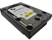"WL 2TB 64MB Cache 7200RPM (Enterprise Grade) SATA 3Gb/s 3.5"" Desktop Hard Drive"
