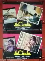 (Set of 5) La Cicale (Alberto Lattuada) Italian Original Movie LOBBY CARD 80s