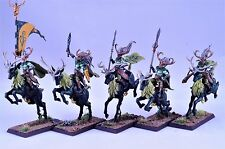 Age of Sigmar Wanders Wild Riders Pro Painted