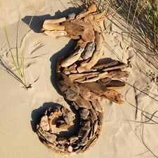 SEESTERN Treibholz Deko m. Seepferdchen (60cm) Motiv Wanddeko Driftwood Holzdeko