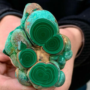 150g Natural Glossy Malachite Transparent Cluster Rough Mineral Sample Healing