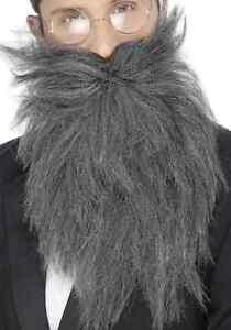 Grey Long Beard and Mustache