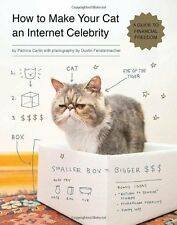 How to Make Your Cat an Internet Celebrity: A Guid