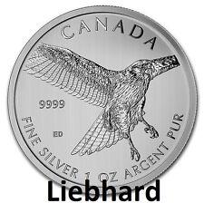 5$ Silber Kanada Birds of Prey Red Tailed Hawk / Rotschwanzbussard 1 OZ 2015