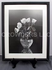 "Dick & Diane Stefanich Black/White Photograph Roses in Vase Framed Print 17""x22"""