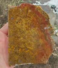 """""""Omg"""" - Beautiful - Rare - Cathedral Agate Slab - 212 Gr. 3243"""