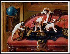 Jack Russell Fox Terrier Pups At Play Lovely Period Image Dog Print Poster