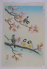 birds, cherry blossoms :Japanese print original Shin Hanga,