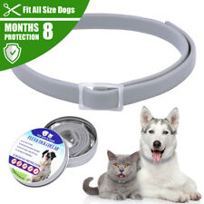 2pcs Tick and Flea Collar For Dogs Cats Small Animals 8 Month Protection Adjust