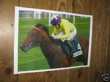 Sea the Stars Horse Racing Legend POSTER 4