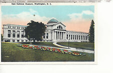 New National Museum  Front View with Flowers  Washington D C   WB  Postcard 287b