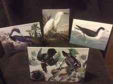4 Aquatic Bird Note Cards