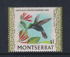 Montserrat - 1970, $1 Antillean Aigrettes Colibri Tampon - M/M - Sg 252