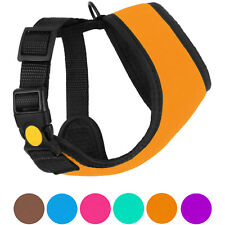 Dog Harness Soft Mesh Adjustable Pet Harnesses for Small Medium Dogs Puppy Vest