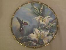 RUBY-THROATED HUMMINGBIRD collector plate CYNDI NELSON Pickard LILIES Bird