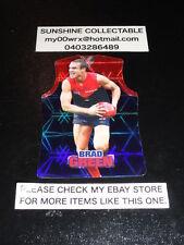 2009 AFL CHAMPIONS DIE CUT CARD NO.116 BRAD GREEN MELBOURNE DEMONS