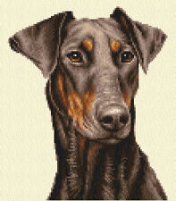 Chocolate DOBERMAN PINSCHER, puppy dog complete counted cross stitch kit