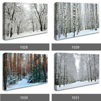 Winter Wonderland Forest Snow Scenery Photo Wall Art Canvas Landscape RMC