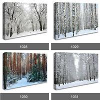 Winter Wonderland Forest Snow Scenery Photo Wall Art Canvas Landscape RMC