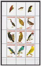 Surinam / Suriname 2007 Heron Woodpecker Specht Birds Vogel Oiseaux MNH tab