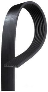 Serpentine Belt  ACDelco Professional  8K876