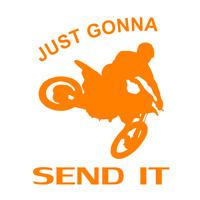 send it sticker ORANGE decal mx motocross dirt bike window still