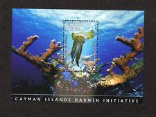 Rjkstamps Cayman Island MNH Scott #1025 Darwin Initiative Souvenir sheet 2008