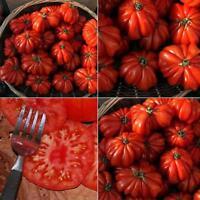 50x Rare Sweet Tomato Fruit Vegetable Seedsme Garden Plant Seeds