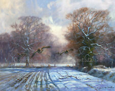 NEW Partridges in the Snow Christmas Cards pack of 10 by John Trickett. C505X