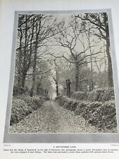 1924: A Devonshire Lane Near Sparkwell, The River Erme Dartmoor Old Photo Print